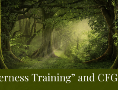 Wilderness Training & CFG Coaches' Training?!